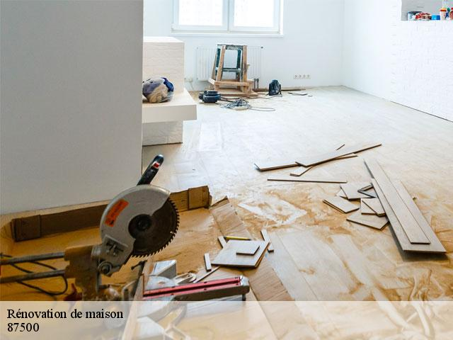 Rénovation de maison  87500